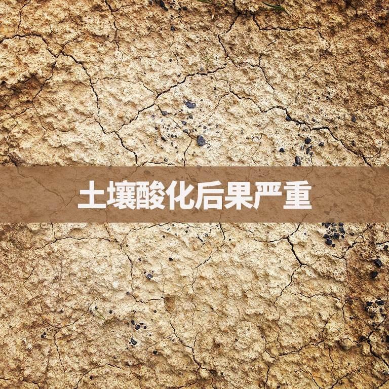 土壤酸化后果严重